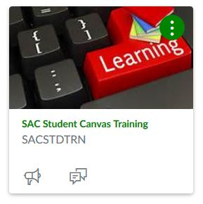 SAC Student Canvas Training.JPG