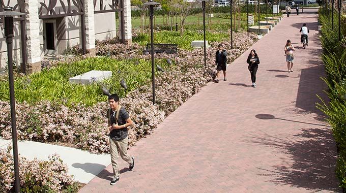 Students walking to campus on sidewalk