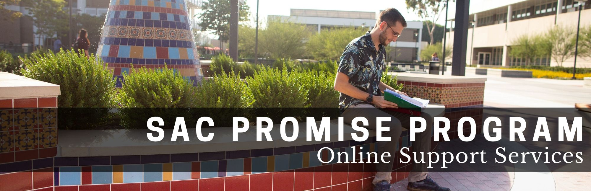 SAC Promise Program Online Support Services